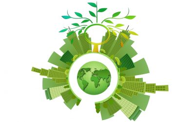 Tax incentives and sustainability